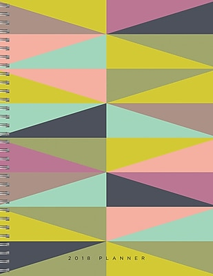 Tf Publishing 2018 Geometric Large Weekly Monthly Planner (18-9781)