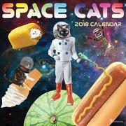 Tf Publishing 2018 Space Cats Wall Calendar (18-1116)