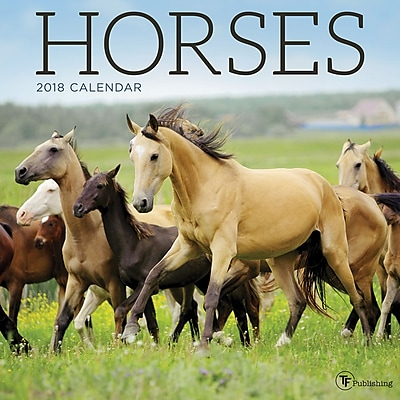 Tf Publishing 2018 Horses Wall Calendar (18-1007)