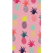 Tf Publishing 2018 Pineapples 2 Yr Pocket Planner (18-7017)