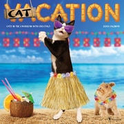 Tf Publishing 2018 Catcation Cats In Caribbean With Cocktails Wall Calendar (18-1002)