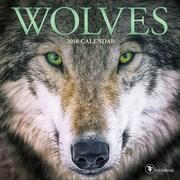 Tf Publishing 2018 Wolves Mini Wall Calendar (18-2012)