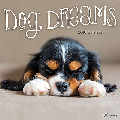 Tf Publishing 2018 Dog Dreams Wall Calendar (18-1016)