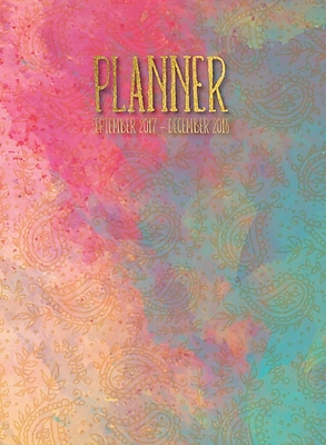 Tf Publishing 2018 Painted Paisley Monthly Planner (18-4251)