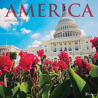 Tf Publishing 2018 America Wall Calendar (18-1096)