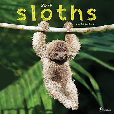 Tf Publishing 2018 Sloths Wall Calendar (18-1010)