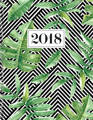 Tfpublishing 2018 Striped Jungle Large Weekly Monthly Planner (18-9605)