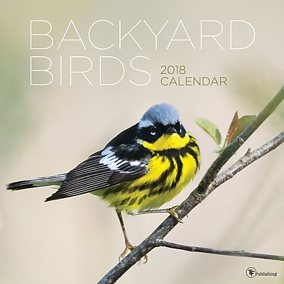 Tf Publishing 2018 Backyard Birds Wall Calendar (18-1001)