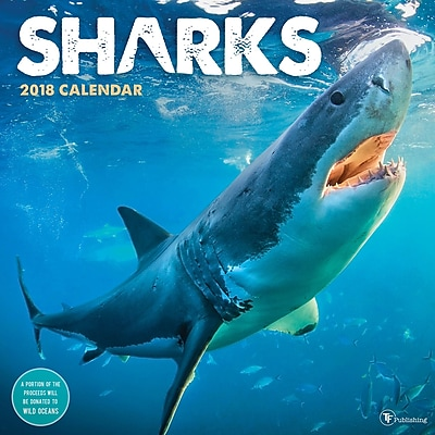 Tf Publishing 2018 Sharks Wall Calendar (18-1186)
