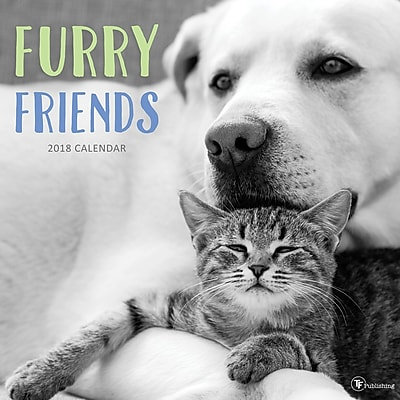 Tf Publishing 2018 Furry Friends Wall Calendar (18-1067)