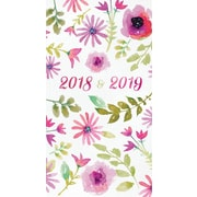 Tf Publishing 2018 Watercolor 2 Yr Pocket Planner (18-7041)