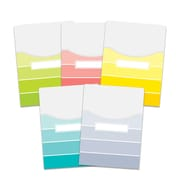 Paint Chips 9x12 Library Pockets, 10/pack (CTP6926)