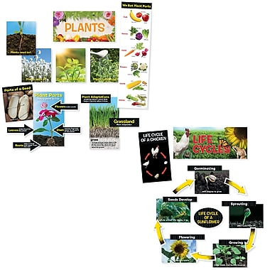 CreativeTeaching Press Science Mini Bulletin Board Pack, 21