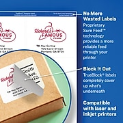 "Avery TrueBlock Laser/Inkjet File Folder Labels, 2/3"" x 3 7/16"", Orange, 750 Labels Per Pack (5166)"