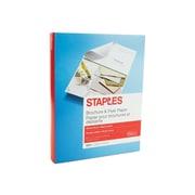 """Staples Brochure & Flyer 8.5"""" x 11"""" Multipurpose Paper, 150/Ream (12486)"""