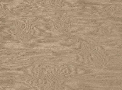 LUX A6 Flat Card 500/Pack, Oak Woodgrain (4030-C-S01-500)