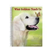 "2020 Willow Creek 7"" x 8.66"" Planner, What Goldens Teach Us, Multi Colors (09338)"