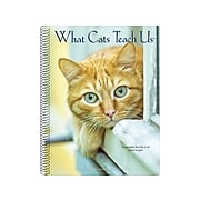 """2020 Willow Creek 7"""" x 8.66"""" Planner, What Cats Teach Us, Multi Colors (09314)"""