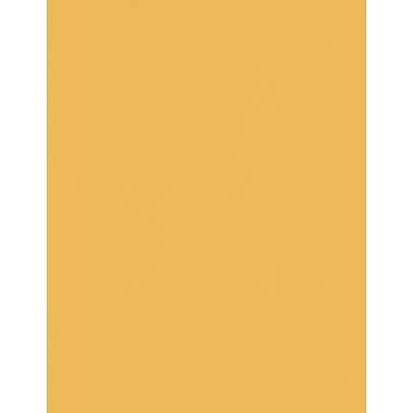 LUX 8 1/2 x 11 Paper 500/Pack, Brown Kraft (81211-P-BK24500)