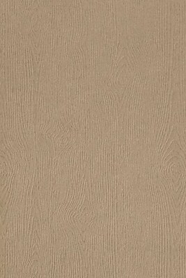 LUX 12 x 18 Cardstock 50/Pack, Oak Woodgrain (1218-C-S01-50)