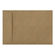 LUX 6 1/2 x 9 1/2 Open End Envelopes 50/Pack, Grocery Bag (LUX-1645-GB-50)