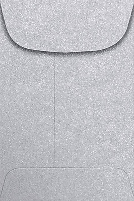 LUX #4 Coin Envelopes (3 x 4 1/2) - Silver Metallic 50/Pack, 80lb. Silver Metallic (4CO-06-50)