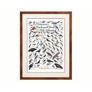 Steven M. Lewers & Associates Peterson'S Backyard Birds Of Mid-Atlantic Poster (Gc19787)