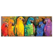Melissa And Doug Parrot Rainbow Cardboard Jigsaw Puzzle, 1000 Pieces (Mlssand1513)