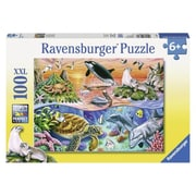 Ravensburger Usa Inc 19.5 In. X 14.25 In. Beautiful Ocean Puzzle 100 Pieces (Jnsn72474)