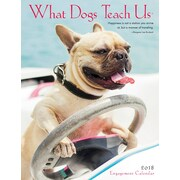 "2018 Willow Creek Press 6.5"" x 8.5"" What Dogs Teach Us Engagement Calendar (47508)"