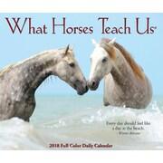"""2018 Willow Creek Press 4.25"""" x 5.25"""" What Horses Teach Us Box Calendar (46945)"""