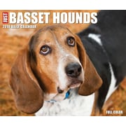 "2018 Willow Creek Press 4.25"" x 5.25"" Just Basset Hounds Box Calendar (46662)"