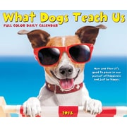 "2018 Willow Creek Press 4.25"" x 5.25"" What Dogs Teach Us Box Calendar (46938)"