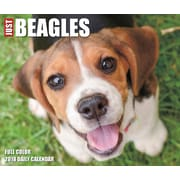 "2018 Willow Creek Press 4.25"" x 5.25"" Just Beagles Box Calendar (46679)"