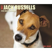 """2018 Willow Creek Press 4.25"""" x 5.25"""" Just Jack Russells Box Calendar (46839)"""