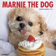 "2018 Willow Creek Press 12"" x 12"" Marnie the Dog Wall Calendar (47386)"