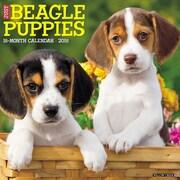 "2018 Willow Creek Press 12"" x 12"" Beagle Puppies Wall Calendar (44101)"