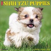 "2018 Willow Creek Press 12"" x 12"" Shih Tzu Puppies Wall Calendar (46099)"