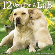"""2018 Willow Creek Press 12"""" x 12"""" 12 Uses for a Lab Wall Calendar (43852)"""