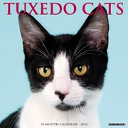 "2018 Willow Creek Press 12"" x 12"" Tuxedo Cats Wall Calendar (46273)"