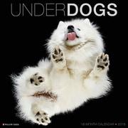 "2018 Willow Creek Press 12"" x 12"" Underdogs Wall Calendar (48116)"