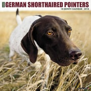 """2018 Willow Creek Press 12"""" x 12"""" German Shorthaired Pointers Wall Calendar (45009)"""