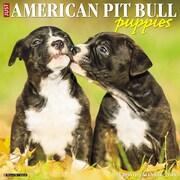 "2018 Willow Creek Press 12"" x 12"" American Pit Bull Terrier Puppies Wall Calendar (47287)"