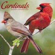 "2018 Willow Creek Press 12"" x 12"" Cardinals Wall Calendar (44385)"