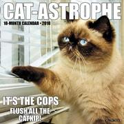 "2018 Willow Creek Press 12"" x 12"" Cat-astrophe Wall Calendar (44415)"