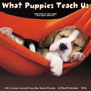 "2018 Willow Creek Press 12"" x 12"" What Puppies Teach Us Wall Calendar (46440)"