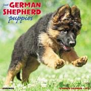 "2018 Willow Creek Press 12"" x 12"" German Shepherd Puppies Wall Calendar (44989)"
