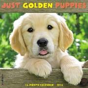 """2018 Willow Creek Press 12"""" x 12"""" Golden Puppies Wall Calendar (45023)"""
