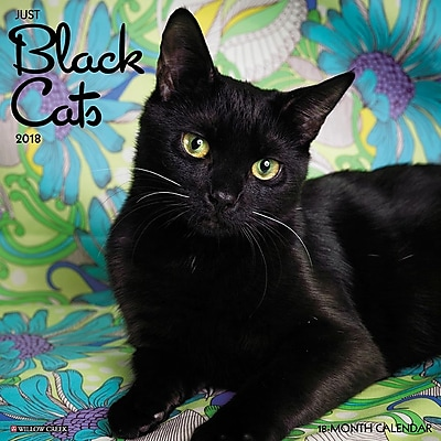 "2018 Willow Creek Press 12"" x 12"" Black Cats Wall Calendar (44163)"
