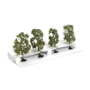 Bachmann Ss 2.5 In.- 2.75 In. Sycamore Trees - 4 (Spws4547)